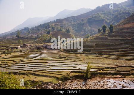 Terraced rice paddies in Lao Chai village near Sapa town, Vietnam - Stock Photo