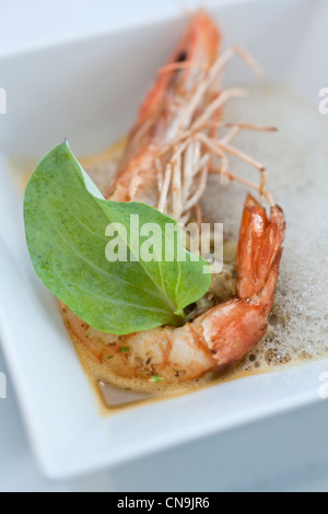 France, Bouches du Rhone, Arles, Prawns with oyster plant leaf and Espelette pepper recipe and Jean Luc Rabanel - Stock Photo