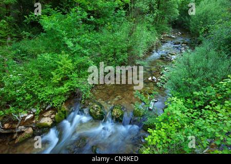 France, Vaucluse, Parc Naturel Regional du Luberon (Natural Regional Park of Luberon), near Lourmarin, river Aiguebrun - Stock Photo