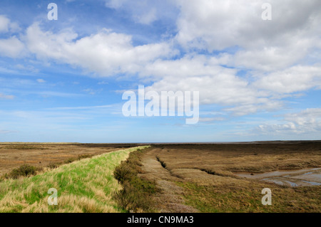 Saltmarshes near Thornham, Norfolk, England, UK - Stock Photo