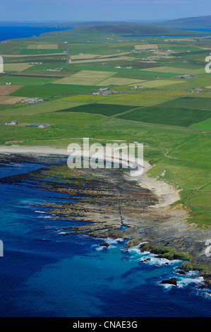 United Kingdom, Scotland, Orkney Islands, Mainland Island, fields and farms scattered by the sea at Birsay (aerial - Stock Photo