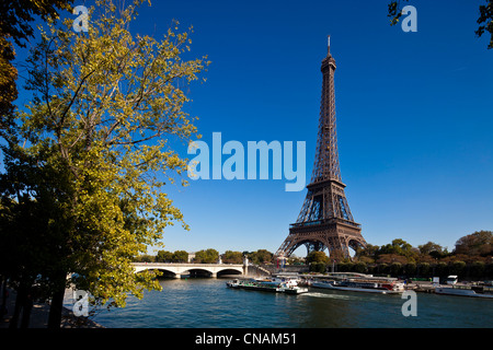France, Paris, Seine river banks, listed as World Heritage by UNESCO, and the Eiffel Tower - Stock Photo