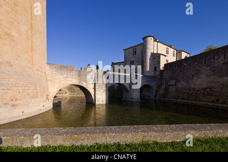 France, Gard, Aigues Mortes, Constance Tower and the remparts seen from the Crusades quay - Stock Photo
