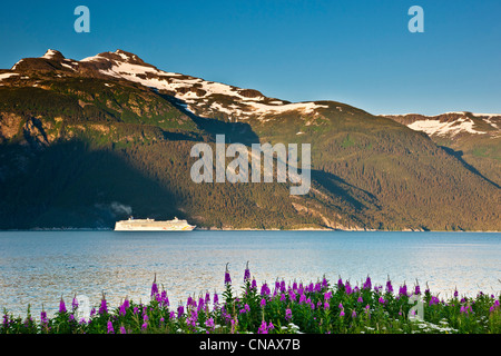 Cruise ship in Chilkoot Inlet going towards Lynn Canal, Haines, Alaska - Stock Photo