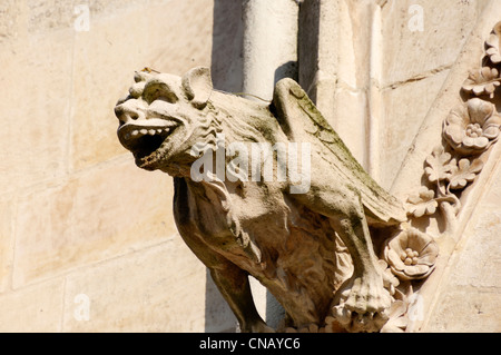 France, Somme, Amiens, Notre Dame d'Amiens Cathedral, listed as World Heritage by UNESCO, details of the gargoyles - Stock Photo