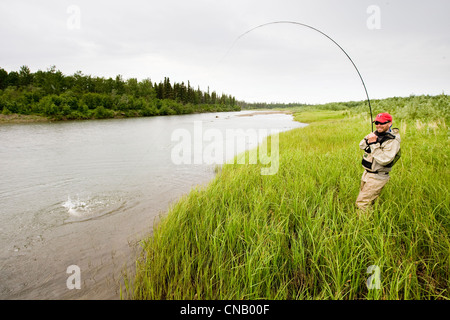 Fly fisherman fights a sockeye salmon on the Mulchatna River in the Bristol Bay area, Southwest Alaska, Summer - Stock Photo