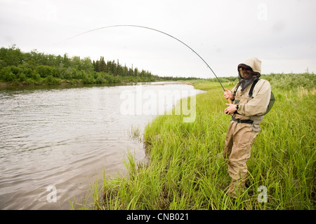 Fly fisherman wearing mosquito protection fishes for salmon on the Mulchatna River in the Bristol Bay area, Alaska - Stock Photo