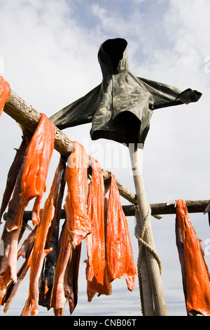 Subsistance caught Bristol Bay Sockeye salmon harvested from Newhalen River drying on a rack, Southwest Alaska, - Stock Photo