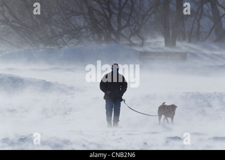 Winds gusting to 70 mph on a winter morning as a man walks his dog along Sandy Beach, Douglas Island, Juneau, Alaska, - Stock Photo