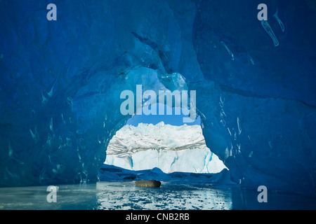 View from inside an ice cave of an iceberg frozen in Mendenhall Lake, Juneau, Southeast Alaska, Winter - Stock Photo