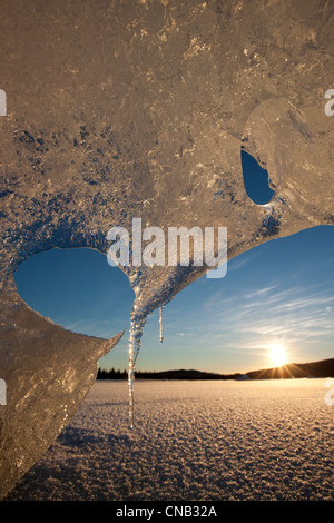 Close up of icebergs formations frozen in Mendenhall Lake with sun peeking through, Tongass National Forest, Alaska, - Stock Photo