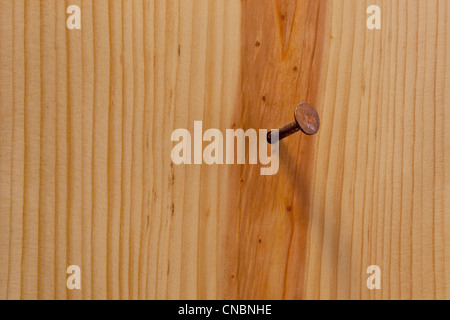 rusty nail in a wood plank or wall with grain texture - Stock Photo