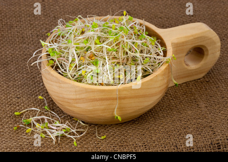 broccoli, radish and clover sprouts in a wooden rustic bowl, burlap background - Stock Photo