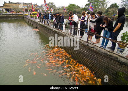 Horizontal view of tourists feeding hungry carp from Trung Dao (Central Path) Bridge inside the Royal or Imperial - Stock Photo
