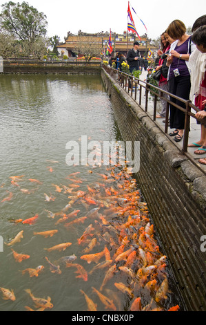 Vertical view of tourists feeding hungry carp from Trung Dao (Central Path) Bridge inside the Royal or Imperial - Stock Photo