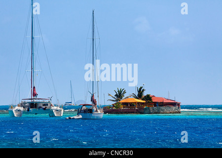 St Vincent, Grenadines, Caribbean, Clifton, Seashell and ...