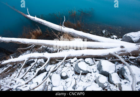 First snow on branches and shore of Eklutna Lake, Chugach State Park, Southcentral Alaska, Winter - Stock Photo