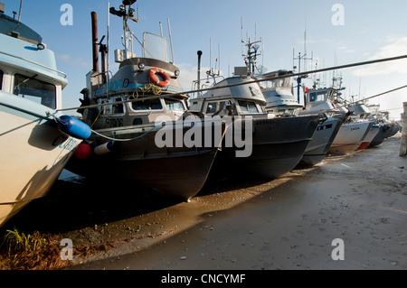 A row of drift net boats moored on the mud flats near Leader Creek in Naknek, Bristol Bay, Alaska - Stock Photo