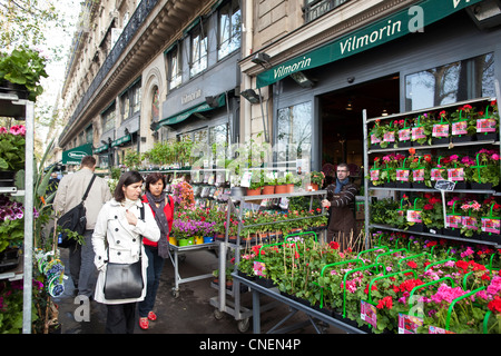flowers shop paris france stock photo royalty free image 42063306 alamy. Black Bedroom Furniture Sets. Home Design Ideas