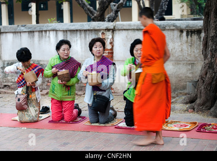 Monk accepting food offering from visiting Japanese Buddhists in Luang Prabang, Laos - Stock Photo