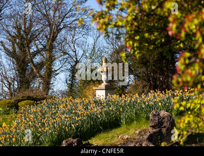 Bank of daffodil flowers with an old garden urn in peaceful scene - Stock Photo