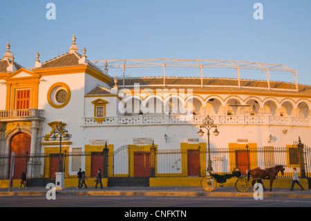 Plaza de Toros de la Maestranza bullring exterior Paseo de Cristobal Colon boulevard central Seville Andalusia Spain - Stock Photo