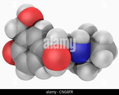 Salbutamol drug molecule - Stock Photo