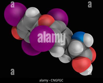 Levothyroxine drug molecule - Stock Photo