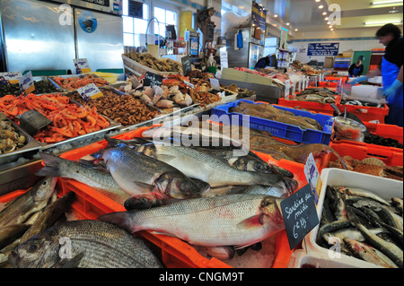 Fresh fish and seafood on display at indoor fish market in the port of Le Tréport, Upper Normandy, Seine-Maritime, - Stock Photo