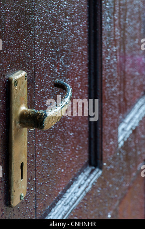 Rain drops on varnished wooden door. Protecting wood from water. UK - Stock Photo