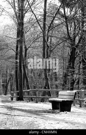 A portrait black and white image of an empty bench on a riverside path in Winter. - Stock Photo