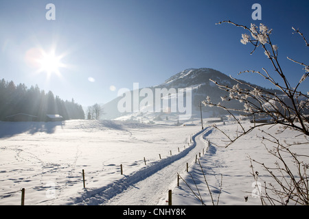 Snow covered landscape, Kirchberg, Tirol, Austria - Stock Photo