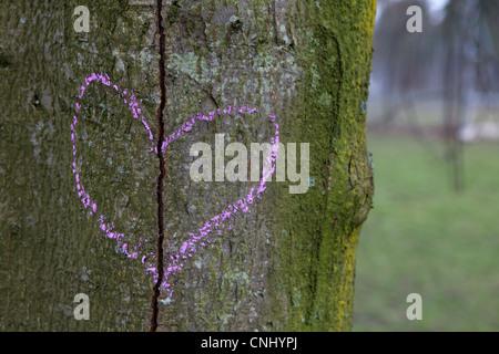 Broken heart drawn on a tree trunk - Stock Photo