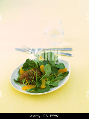 Tuna tartar with lettuce - Stock Photo