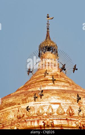 Dhammayazika paya, Pagan, Burma. Bagan, Myanmar - Stock Photo