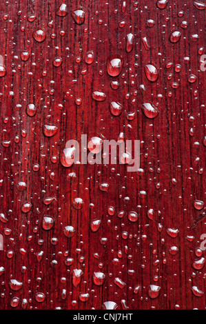 Rain drops on varnished wood. Protecting wood from water - Stock Photo