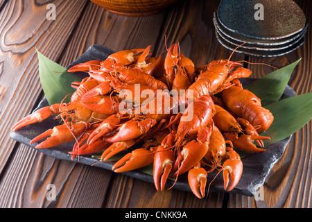 Boiled Signal Crayfish - Stock Photo