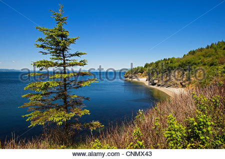 St. Lawrence River,Parc National Forillon,Gaspesie,Gaspé Peninsula,Quebec,Canada - Stock Photo