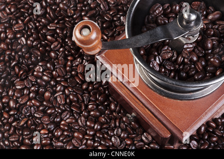 Photo of a coffee grinder with fresh roasted arabica and robusta beans