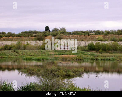 View of flooded former chalk quarry habitat, College Lake Nature Reserve, Tring, Hertfordshire, England, october - Stock Photo