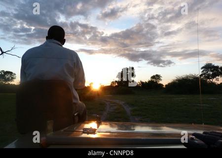 'Spotter' sitting at front of safari vehicle at dusk, Okavango Delta, Botswana - Stock Photo