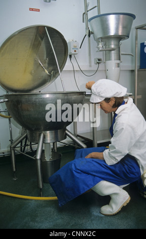 Dairy farming, worker filtering milk in parlour, Prosperous Home Farm, Hungerford, Berkshire, England - Stock Photo