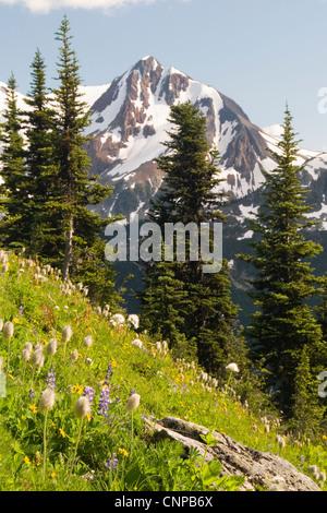 Fissile Mountain from Blackcomb Mountain, Whistler, BC, Canada. - Stock Photo