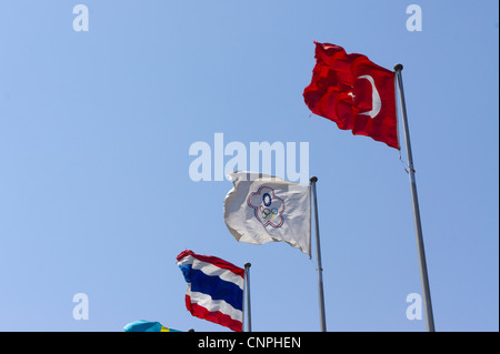 The Chinese Taipei Olympic Committee flag used instead of the Republic of China (Taiwan) flag at the 2008 Beijing - Stock Photo
