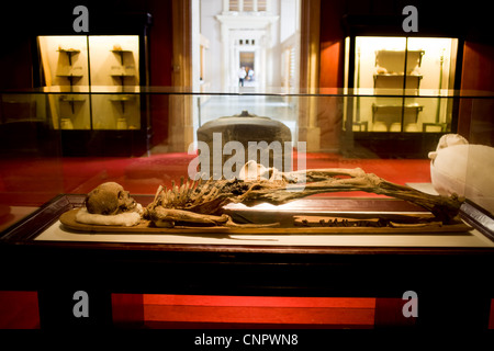 Mummy of Sidonian King Tabnit at the Archaeological Museum in Istanbul, Turkey - Stock Photo