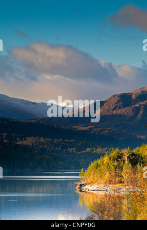 Autumn in Glen Affric - Stock Photo