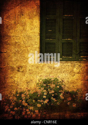 Old house grunge photo of window & flowers - Stock Photo
