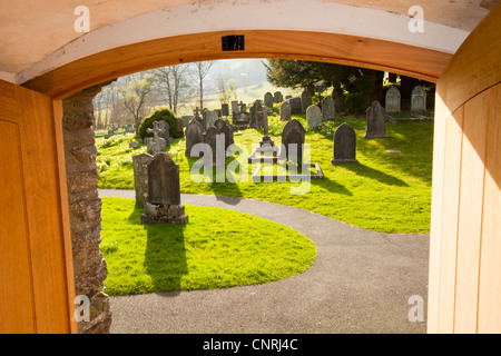 Daffodils flowering in the church yard of Jesus church in Troutbeck, Lake District, UK, from the entrance porch. - Stock Photo