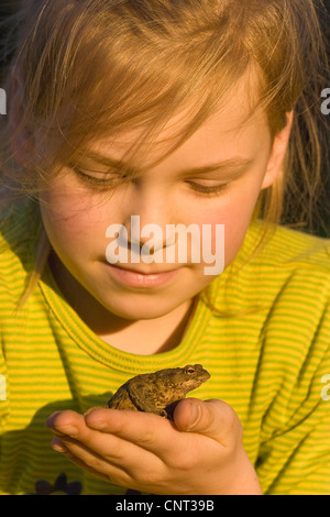 European common toad (Bufo bufo), girl with a common toad on her hand