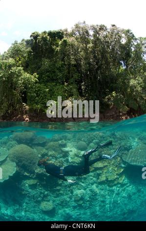 Split level shot of snorkeller at Restorf Island, Kimbe Bay, Papua New Guinea. - Stock Photo
